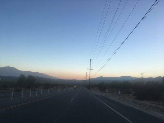 DESERT:Yucca1