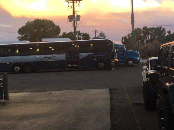 GREENRIVER:Buss