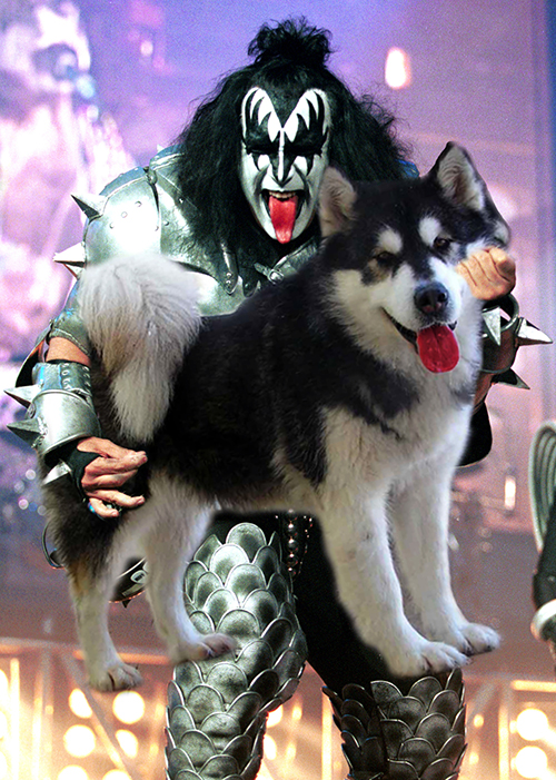 Gene Simmons, Kiss.