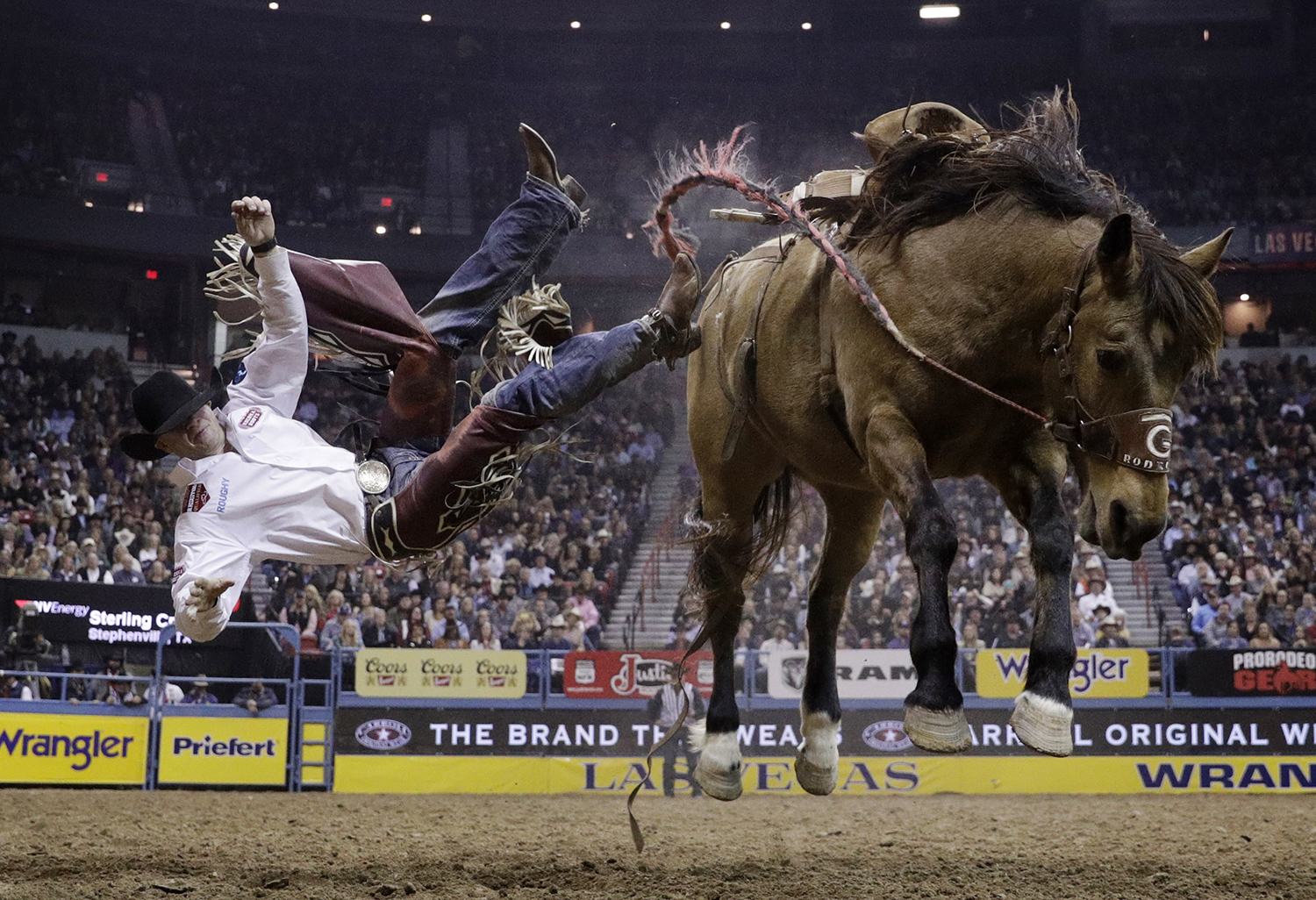 Sterling Crawley gets tossed of his horse while competing in the saddle bronc riding event during the final night of the National Finals Rodeo, Saturday, Dec. 10, 2016, in Las Vegas. (AP Photo/John Locher)