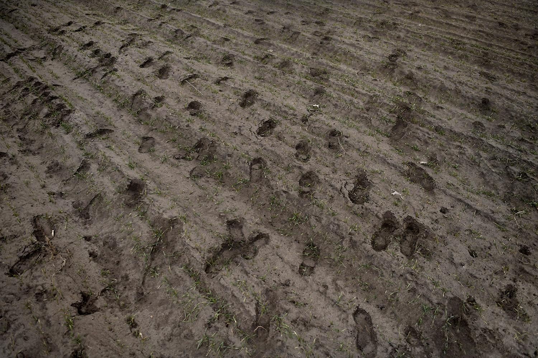foto : andbar : assothalom. nattpatrull med soldaten: heredi barnabas borgmästaren: l·szlÛ toroczkai