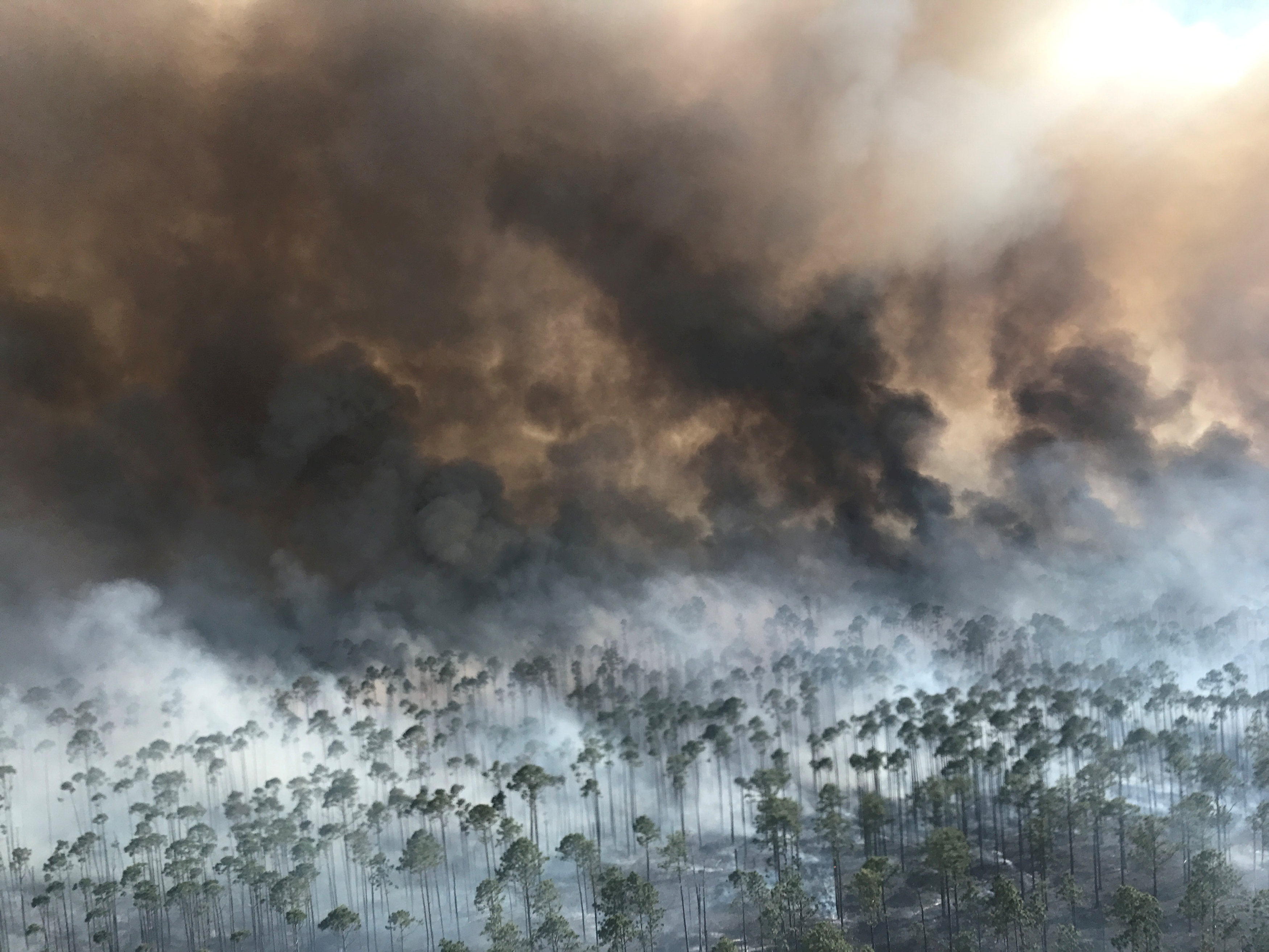 FOLKSTON 2017-05-03 The West Mims fire burns in the Okefenokee National Wildlife Refuge, Georgia, U.S. April 25, 2017. Fish and Wildlife Service/Michael Lusk/Handout via REUTERS FOR EDITORIAL USE ONLY. NOT FOR SALE FOR MARKETING OR ADVERTISING CAMPAIGNSTHIS IMAGE HAS BEEN SUPPLIED BY A THIRD PARTY. IT IS DISTRIBUTED, EXACTLY AS RECEIVED BY REUTERS, AS A SERVICE TO CLIENTS TPX IMAGES OF THE DAY Photo: / REUTERS / TT / kod 72000