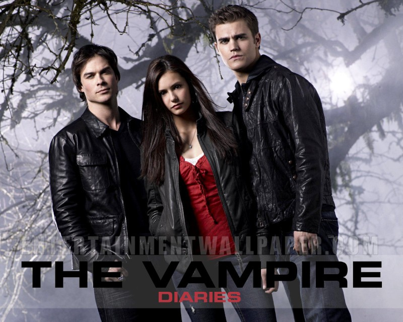 tv_the_vampire_diaries01.jpg