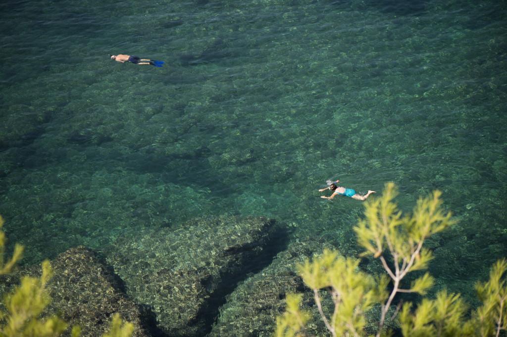 Västkusten bjuder på perfekt snorkling!