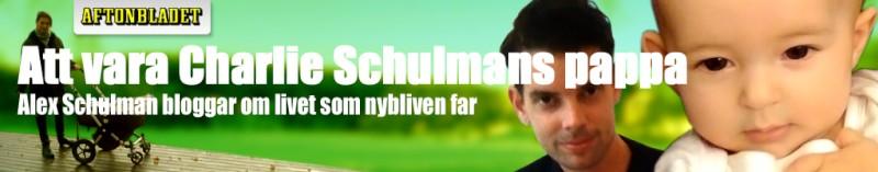 AlexBanner-MartinRinman1.jpg