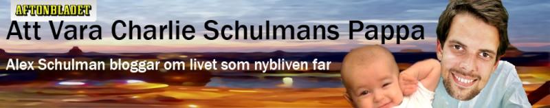 Schulmanbanner-omgjord.jpg