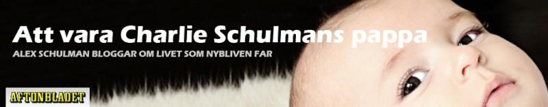 Schulmans sidhuvud.jpg