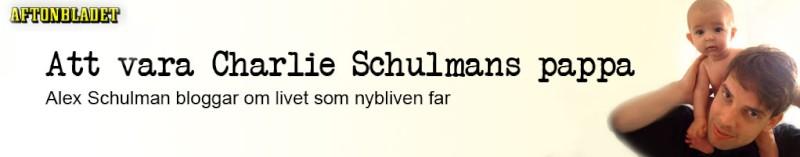 schulmanheader.jpg