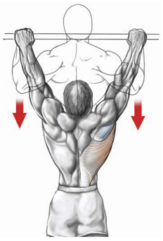 wide-grip-pull-up