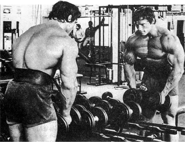Snyggt jobbat, bara 54 repetitioner kvar. Heja! Bild lånad av: Schwarzenegger.com