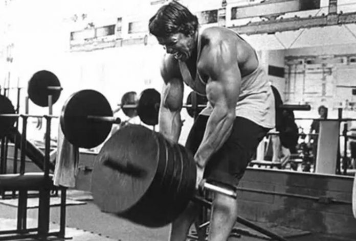 arnold5