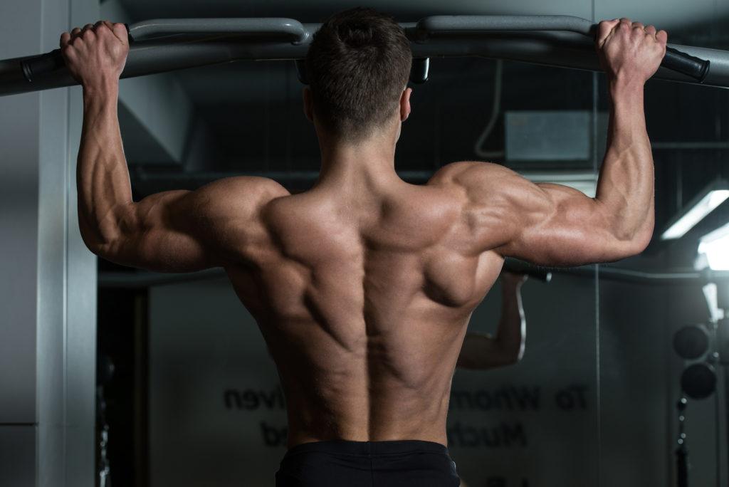 Chins - överkroppsträningens okrönte konung. Bild lånad av: muscleprodigy.com.