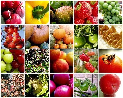 fruit-vegetable-mosaic.jpg