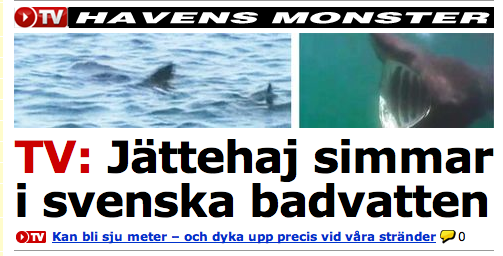Monsterhaj svenska