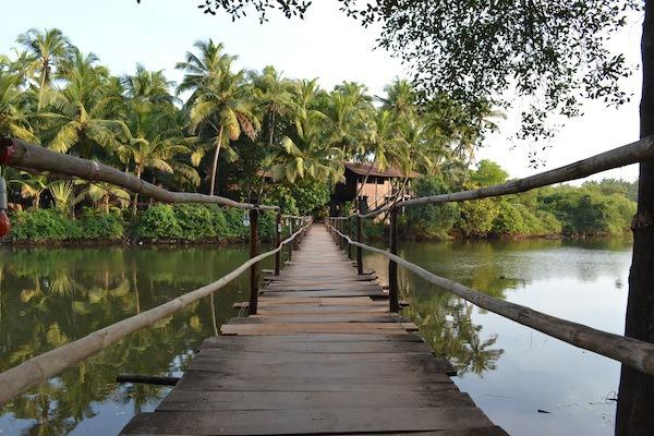 Ashiyana-bridge